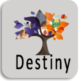 Link to Destiny